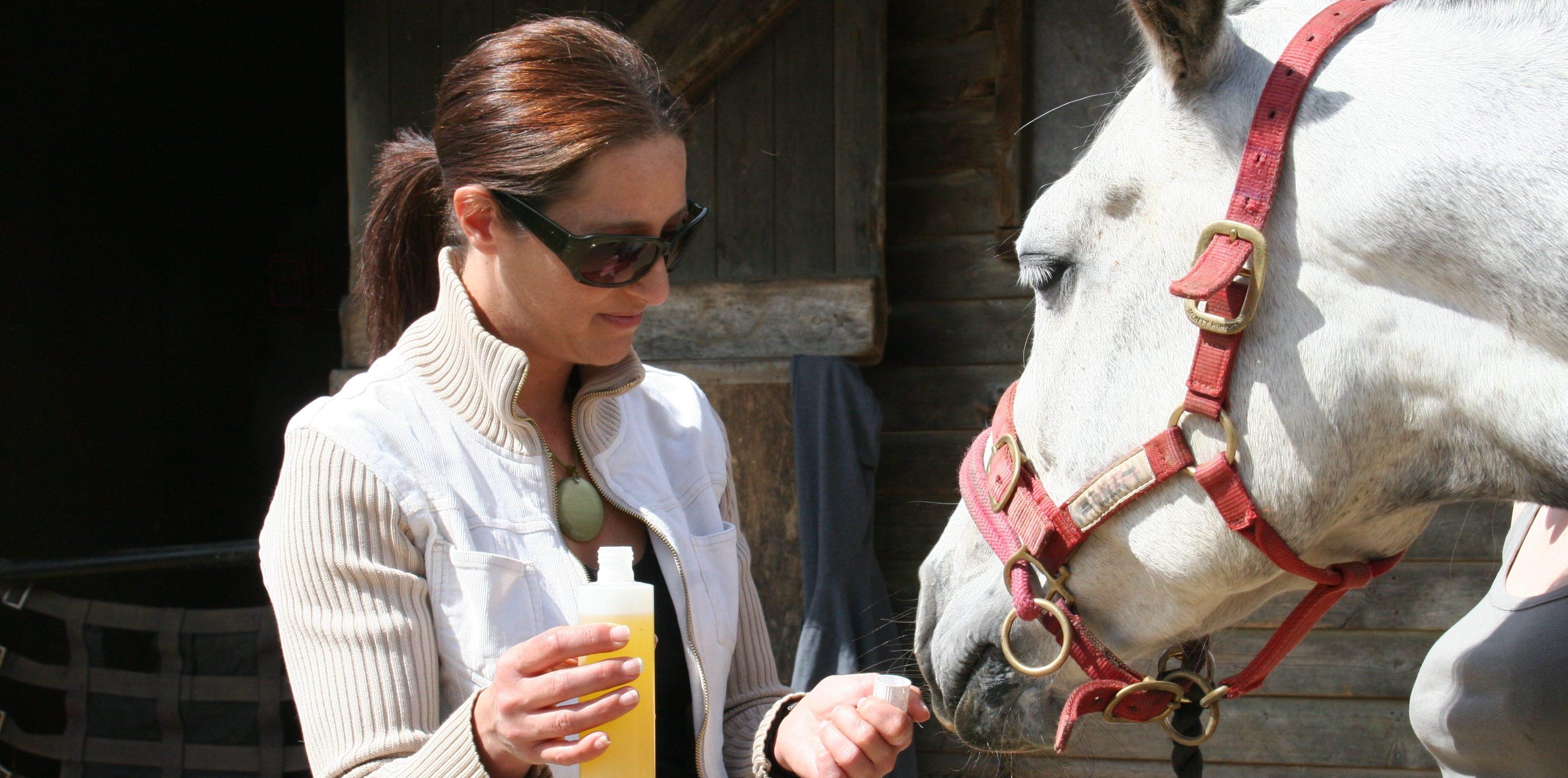 animal therapy borehamwood